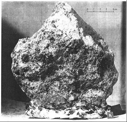 Живые камни Луны