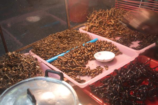Бангкок или паттайя что лучше